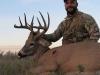 Jason-Sealock-Deer