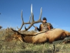 Troy-Mills-Elk